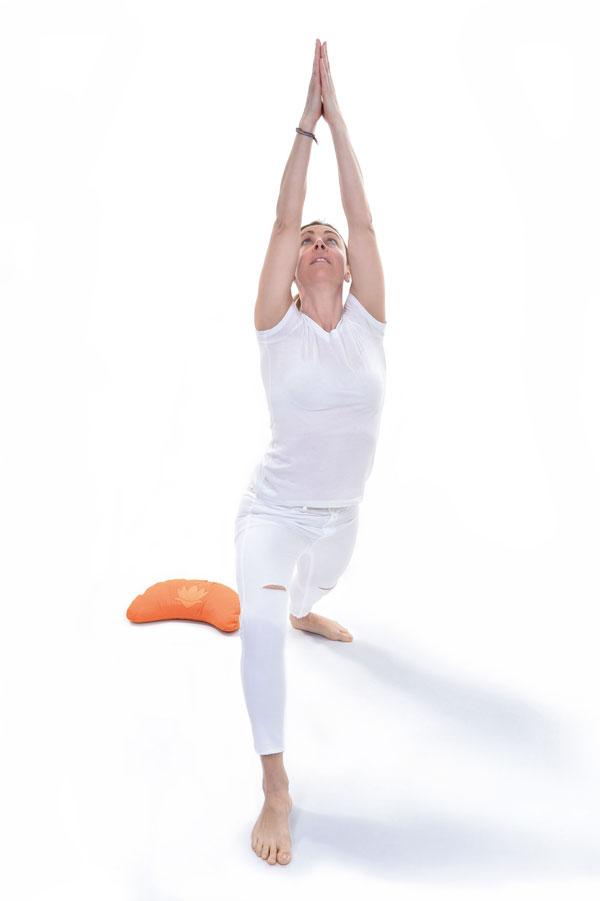 Deborah-Compagnoni-testimonial-Yogaday2016-1