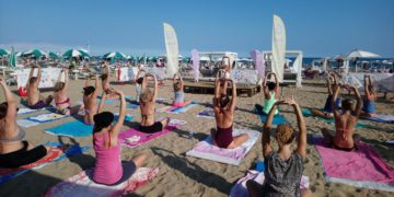 TREVISOYOGADAY mare
